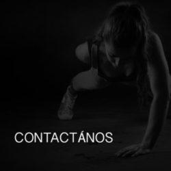 Contacto Cursos 2B